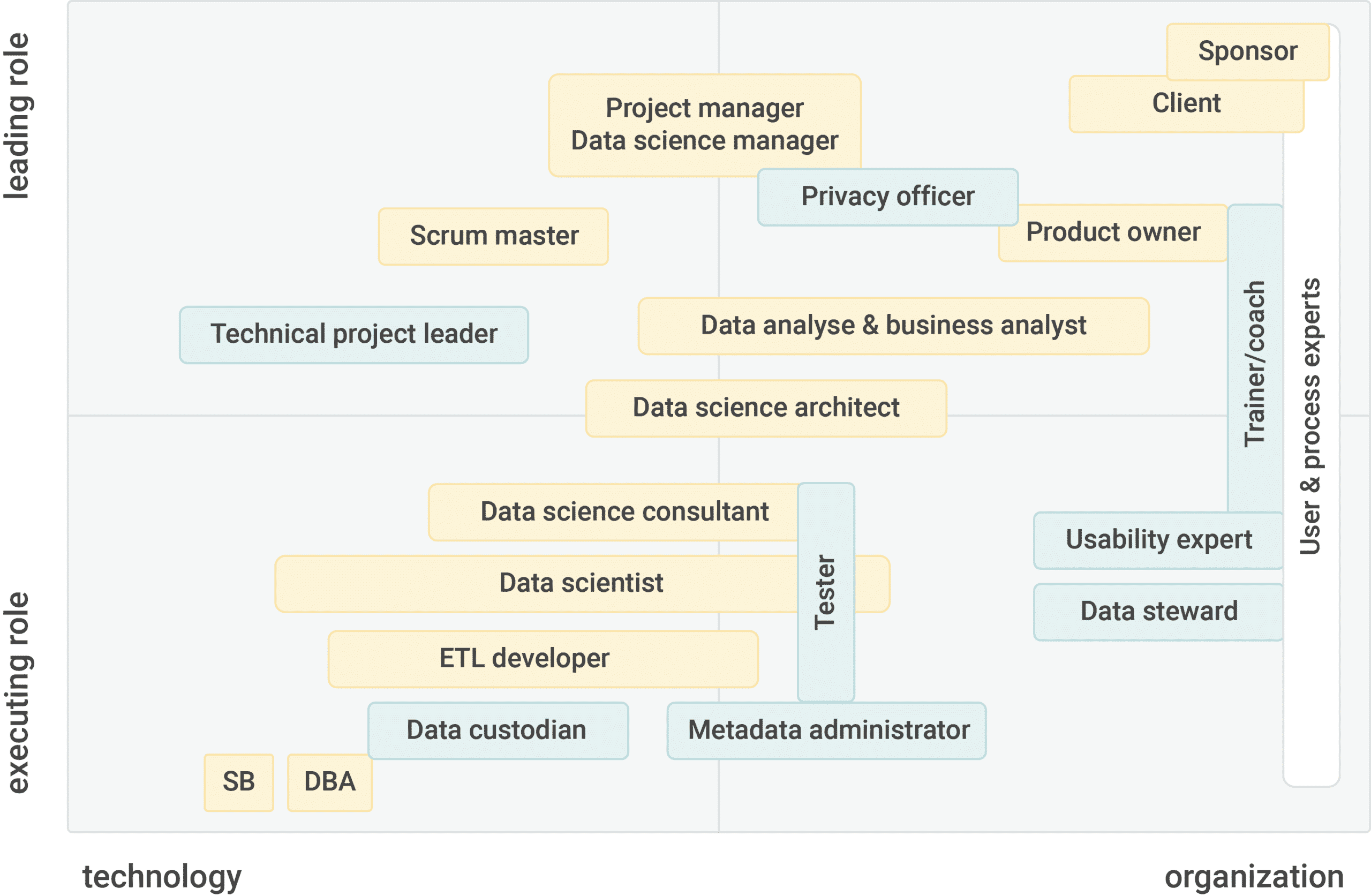 Business Intelligence roles and competences