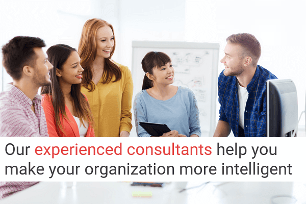 Our experienced consultants help you make your organization more intelligent
