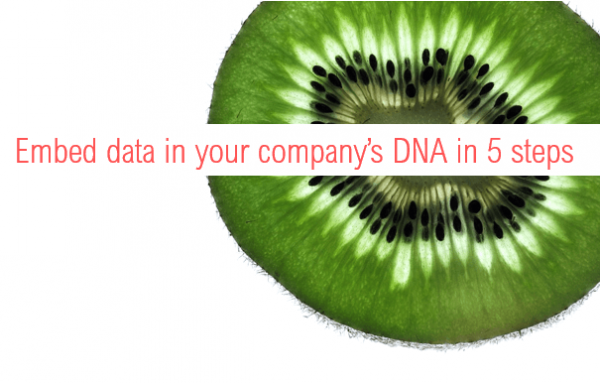 Embed data in your company's DNA in 5 steps
