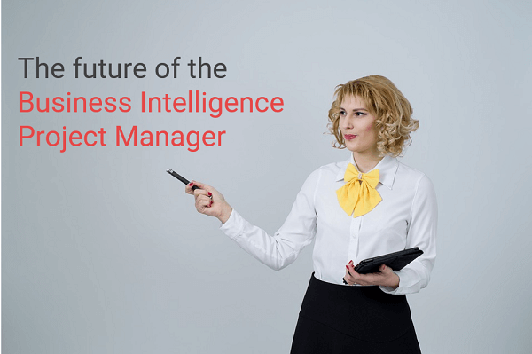 BI Project Manager