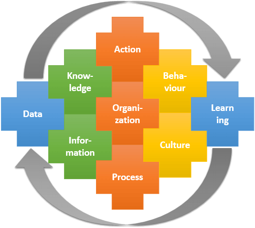 Business Intelligence governed by organization, the business processes, culture and learning
