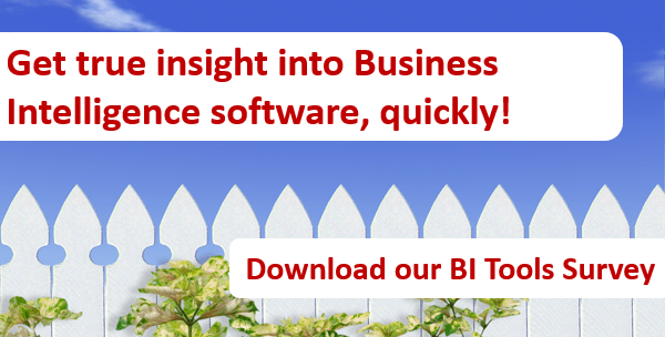 Get true insight into Business Intelligence software, quickly!