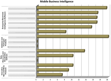Ranking in the category 'Mobile Business Intelligence'