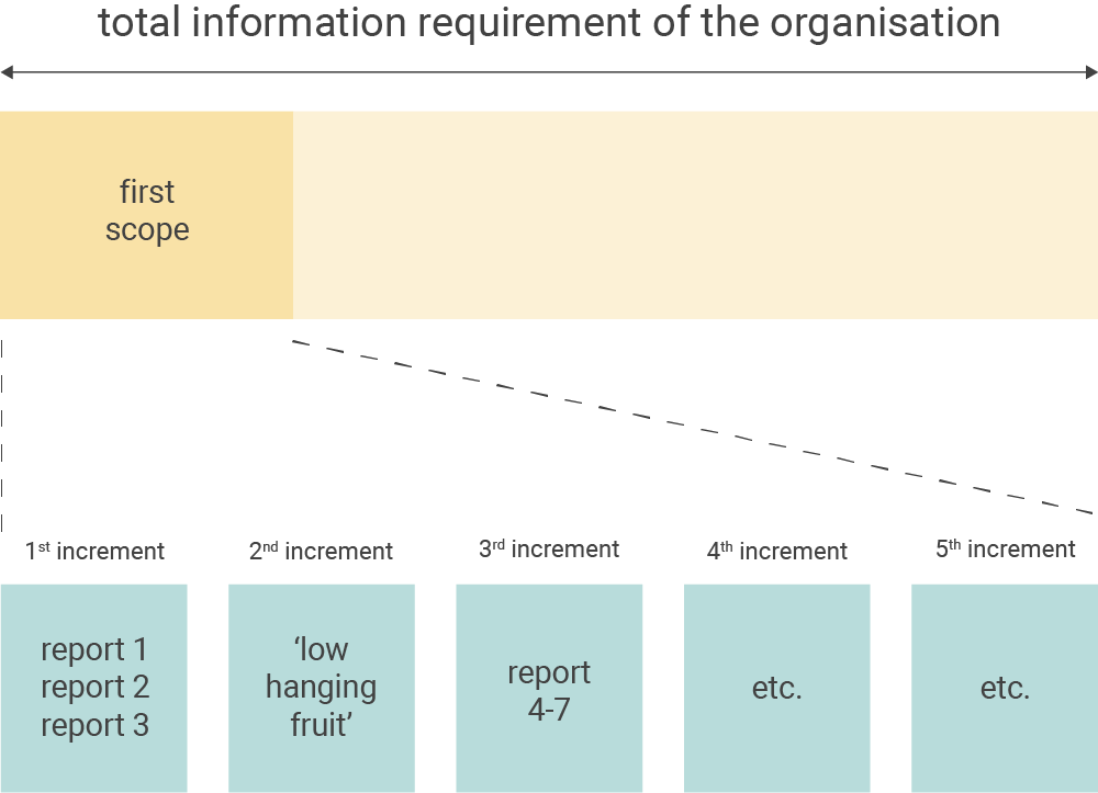 The Business case and scope of the first Business Intelligence project